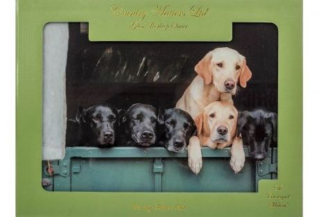 Labs in Landy Quality Glass Work Top Saver By Country Matters Labrador Design